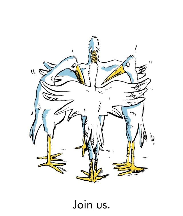 Stork_group_main_2